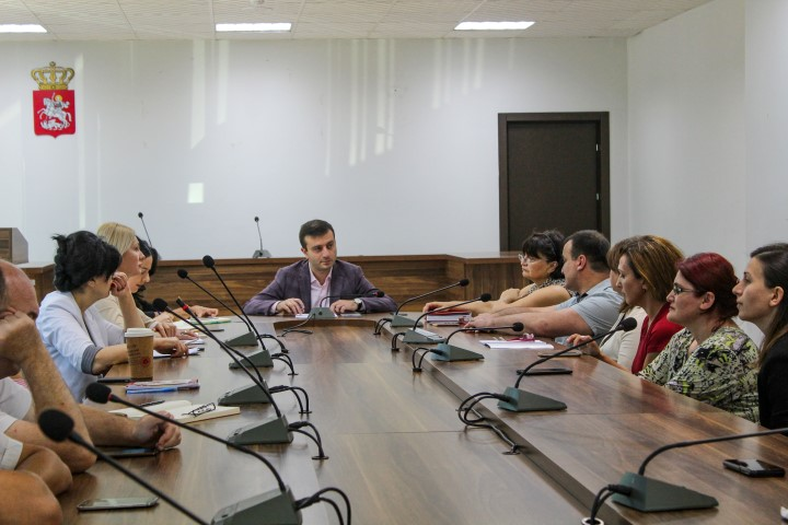 The  Governor in Shida Kartli and the representatives of the ENGOs plan active cooperation