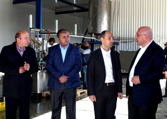 New processing enterprise of fruits and vegetables was opened in Shida Kartli