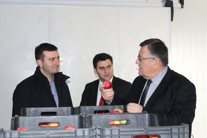 Fruit-vegetable Storage Refrigerator Complex has been A ctivated in Shida Kartli