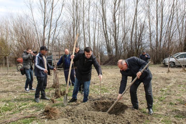 150  Seedlings were given to Farmer Aleksandre Kopadze Free of Charge
