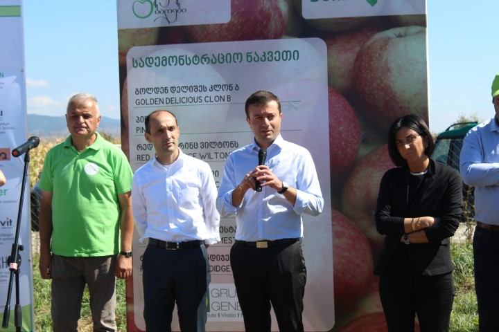 The Governor in Shida Kartli together with the Minister of  Environment and Agriculture visited apple-grown gardens