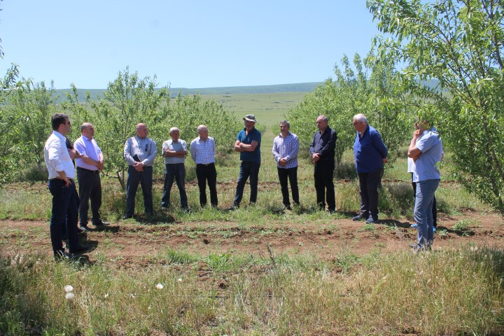 The farmers of Kaspi introduced to the anti-crisis plan of agriculture